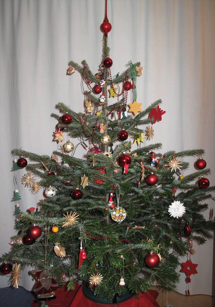 Weihnachtsbaum kaufen luneburg